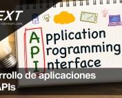 Desarrollo Application Programming Interface